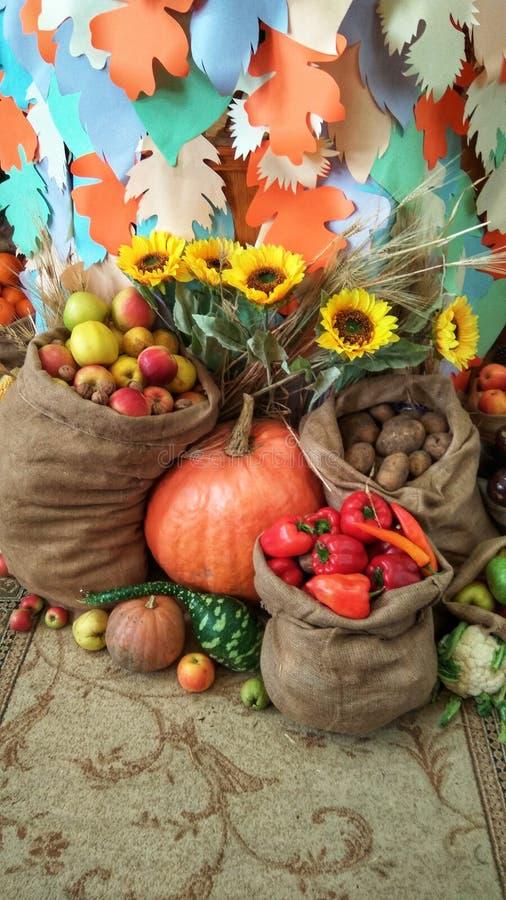 récolte riche des légumes et des fruits dans les sacs image libre de droits