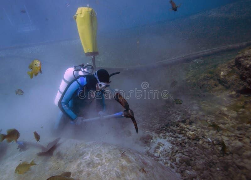 Récolteuse sous-marine - ressorts de vortex photo libre de droits