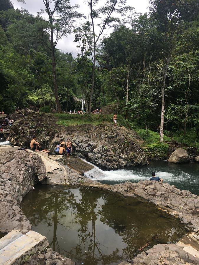 Récréation de rivière de forêt photo stock