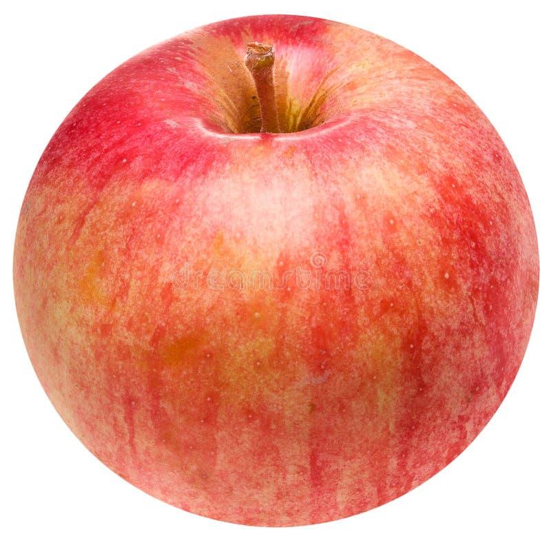 Réellement autour d'Apple images libres de droits