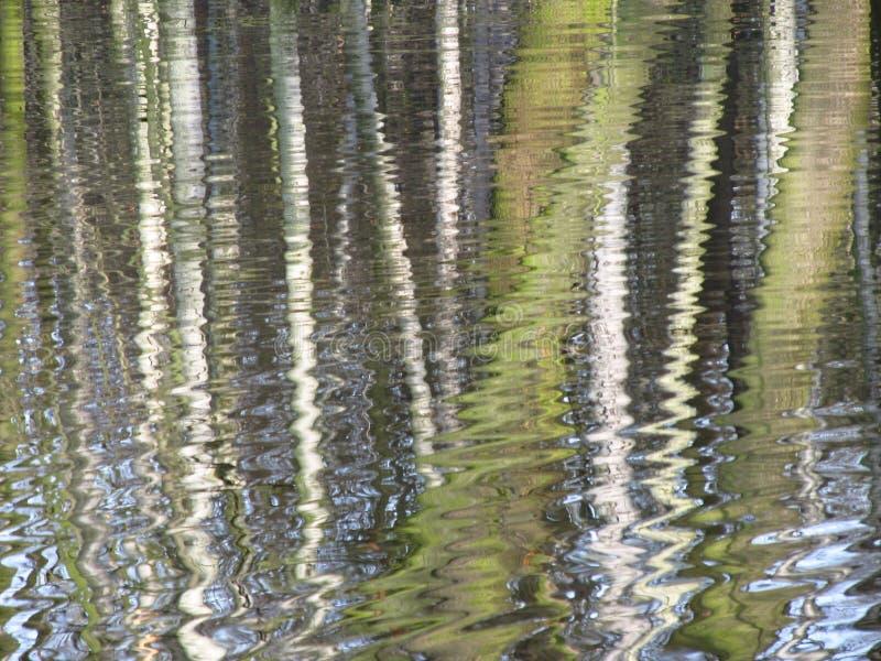 Réflexion à moitié abstraite de forêt photographie stock