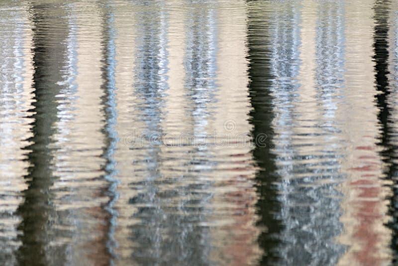Réflexion abstraite des arbres dans l'eau image libre de droits