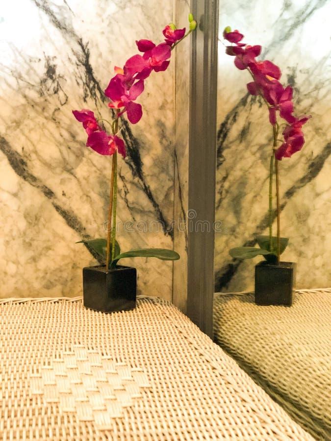 Réflexion créative d'orchidée photos libres de droits