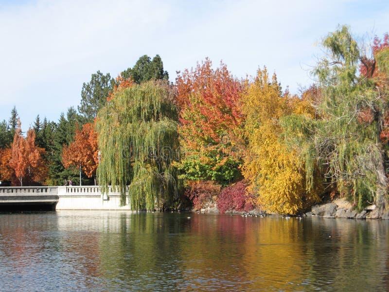 Réflexion d'automne photographie stock libre de droits
