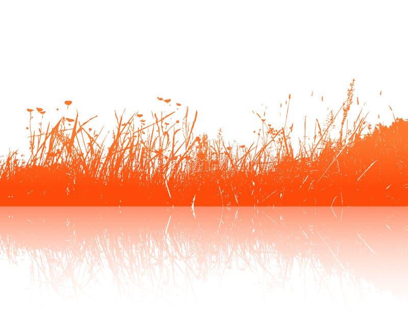 Réflexion d'herbe orange. Vecteur illustration stock