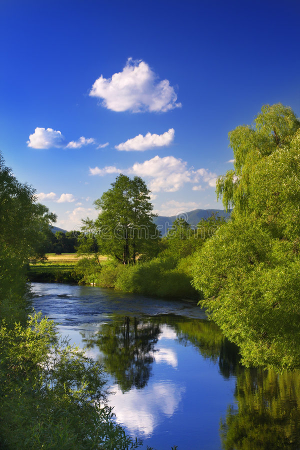 Réflexion dans le fleuve image stock
