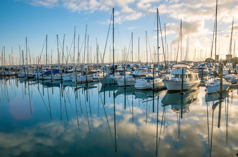 Réflexion de bateaux d'Auckland dans la marina photographie stock libre de droits
