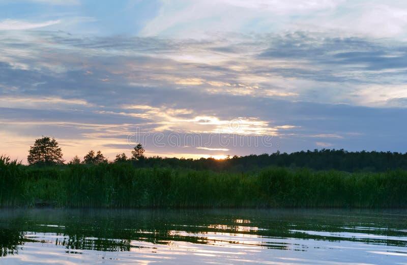 Réflexion de coucher du soleil dans un petit étang, réflexion d'aube dans un marais dans le sauvage photos stock
