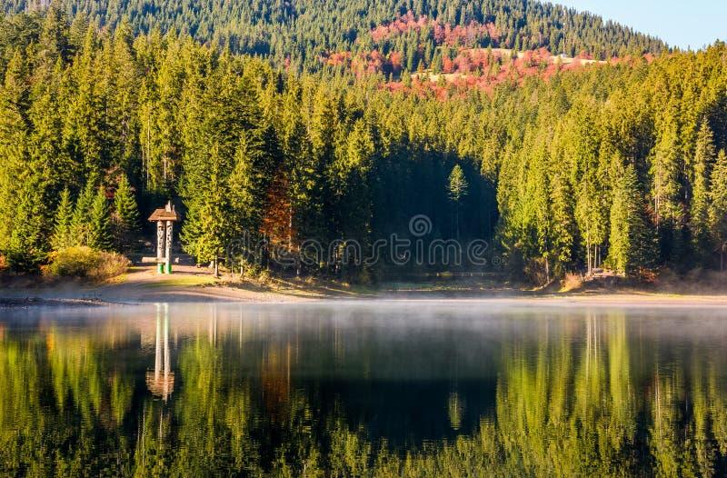 Réflexion de forêt sur la surface brumeuse du lac Synevyr photo stock