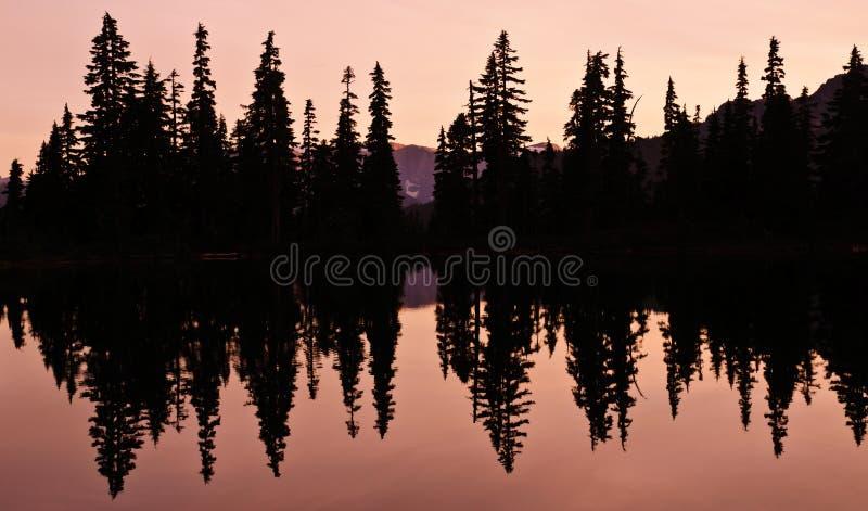 Réflexion de lac avec la silhouette des arbres photos libres de droits