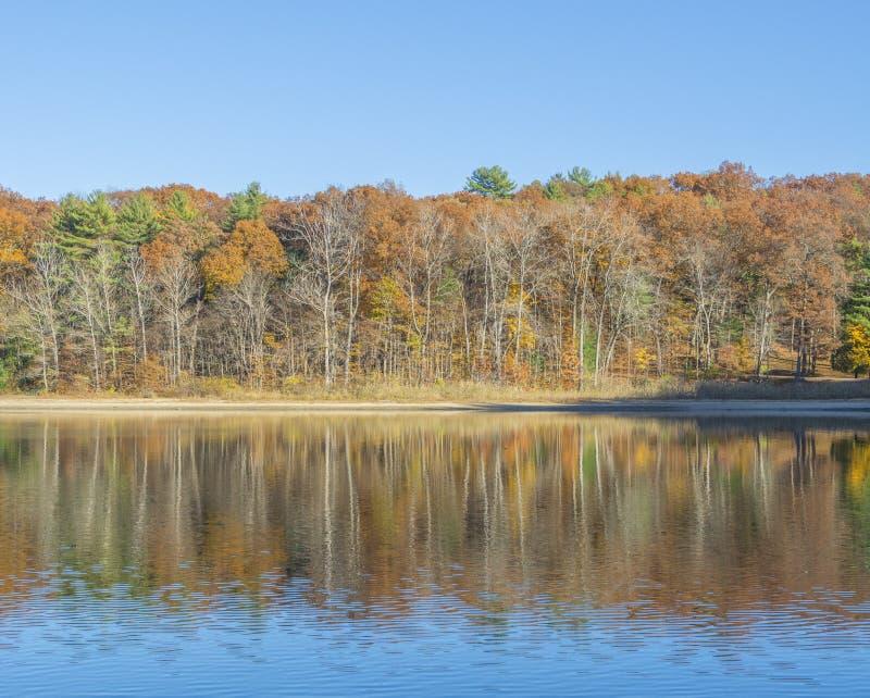 Réflexion de Ripply d'Autumn Scenery photographie stock libre de droits