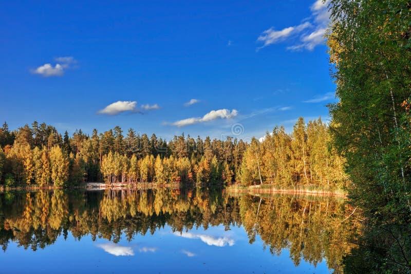 Réflexion des lacs forestiers en automne photos stock