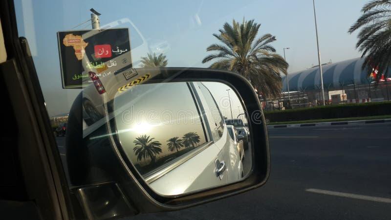 Réflexion des palmiers dattiers - à Dubaï, Emirats Arabes Unis images stock