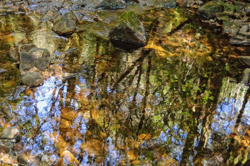 Réflexion Nelson River - en Tasmanie photographie stock libre de droits
