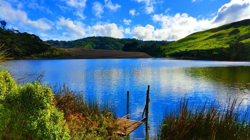 Réflexion sur le lac Wainamu images libres de droits