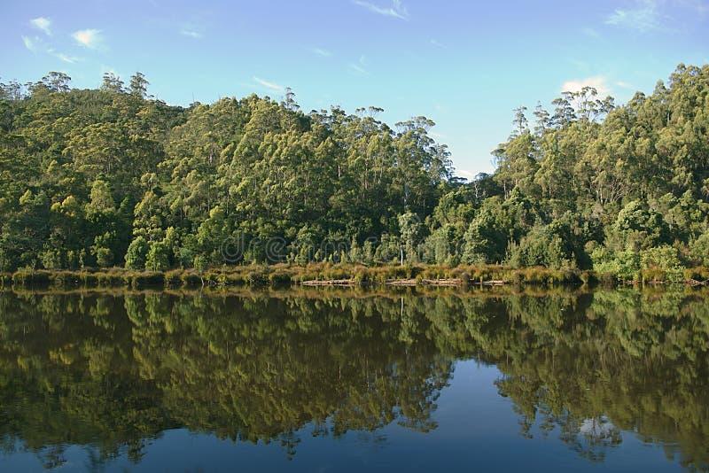 Réflexion sur le Roi River Tasmania photographie stock