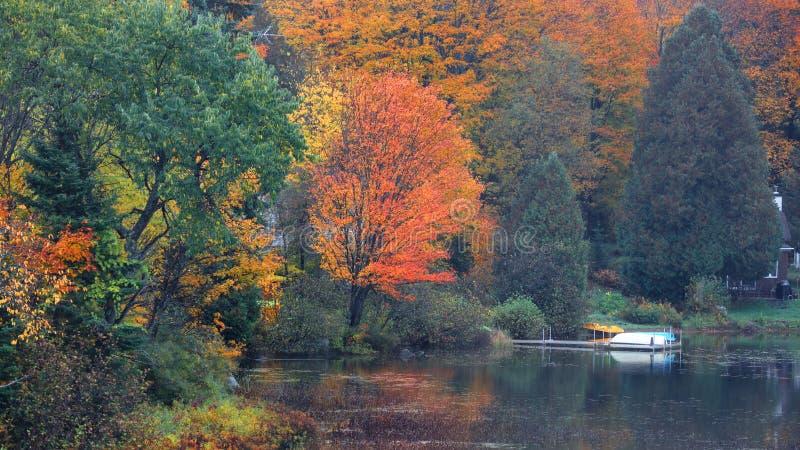 Réflexions d'arbre d'automne dans l'étang photographie stock