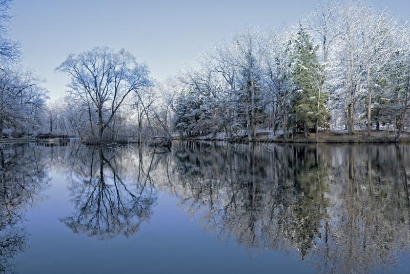 Réflexions d'arbre d'hiver de Milou images stock