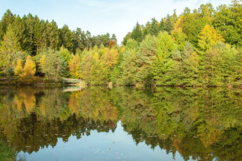 Réflexions d'automne dans l'eau des arbres dans la forêt de doyen dans la campagne anglaise photos libres de droits
