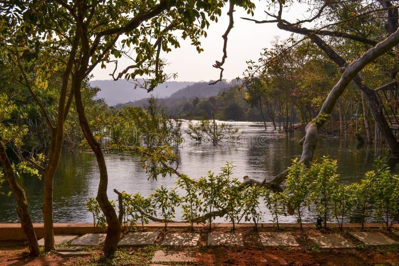 Réflexions d'eau de rivière photographie stock libre de droits