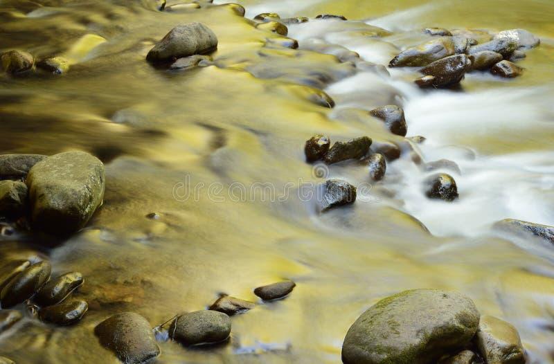 Réflexions d'or peu de rivière photos libres de droits