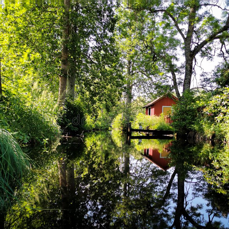 Réflexions d'un été suédois image libre de droits