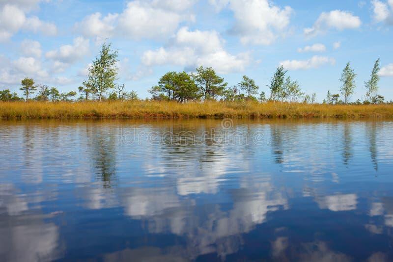 Réflexions dans l'eau. photographie stock libre de droits