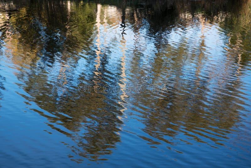 Réflexions dans l'eau image stock
