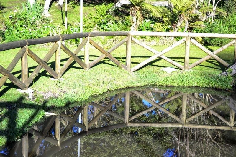 Réflexions dans l'eau photographie stock