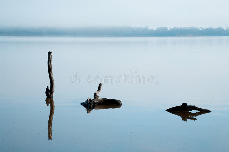 Réflexions dans l'eau immobile images stock