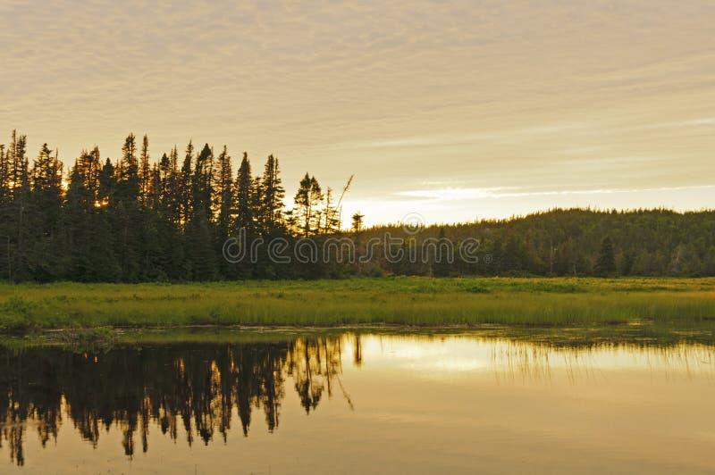 Réflexions de coucher du soleil sur un étang à distance photographie stock libre de droits