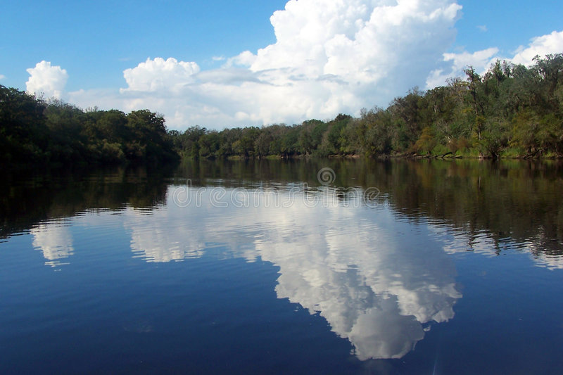 Réflexions de fleuve de Suwannee image libre de droits
