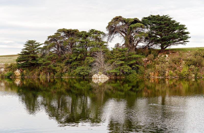 Réflexions de l'eau sur la rivière Australie de Hopkins image stock