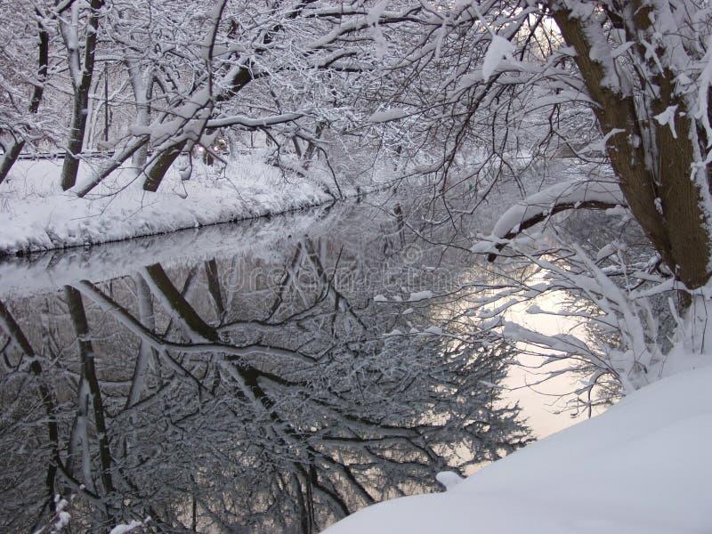 Réflexions de l'hiver photo libre de droits