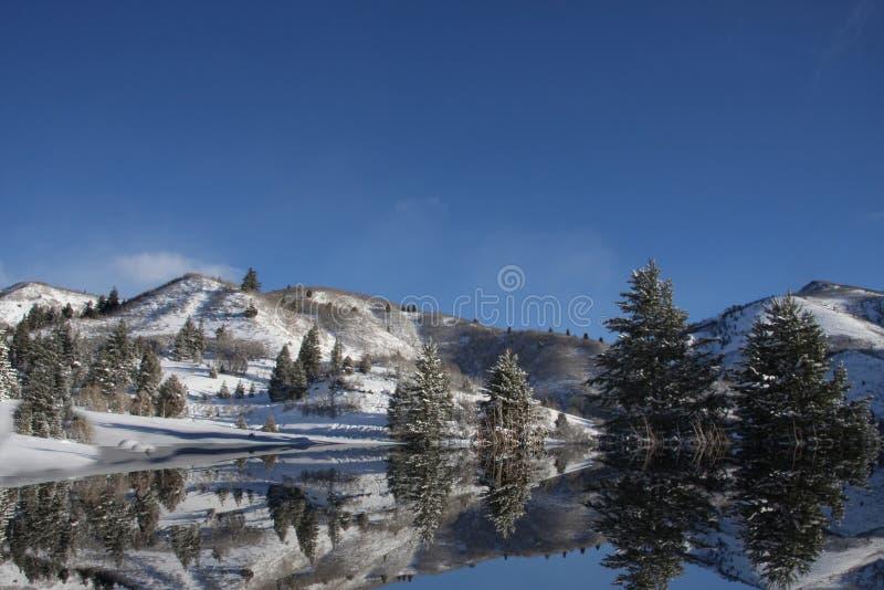 Réflexions de l'hiver image libre de droits