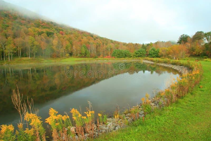 Réflexions de lac hill de pin image libre de droits