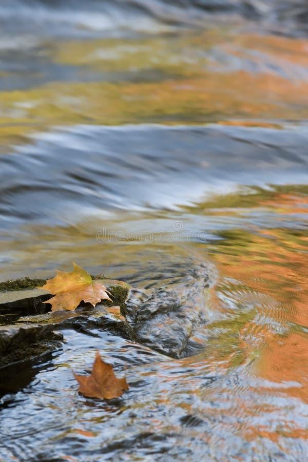 réflexions de rapids d'automne image libre de droits