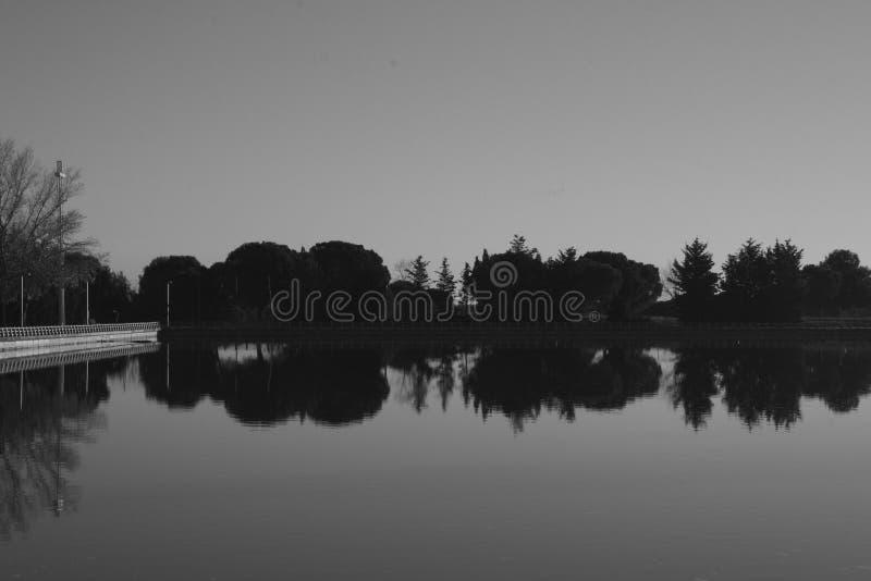 Réflexions en noir et blanc photographie stock libre de droits