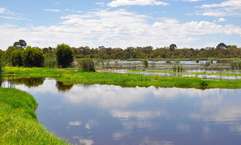 Réflexions : Marécages de Beelier, Australie occidentale photo stock