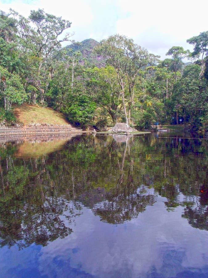 Réflexions sur la nature photographie stock