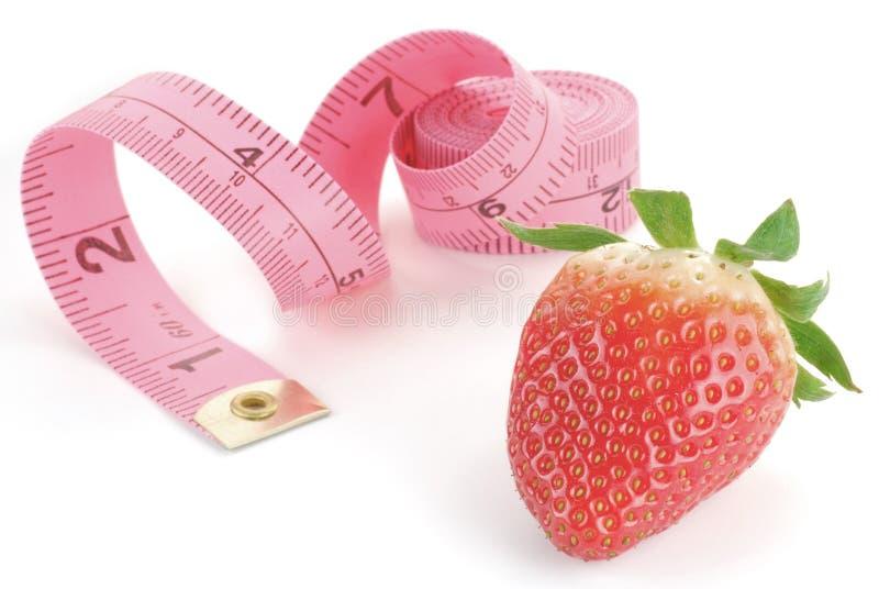 Régime de fraise photographie stock libre de droits