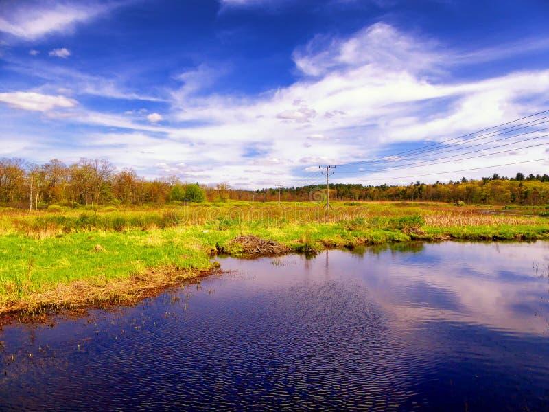 Région commémorative blanche de nature photo stock