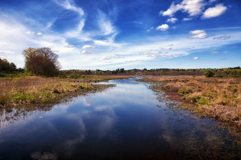 Région commémorative blanche de nature photographie stock libre de droits