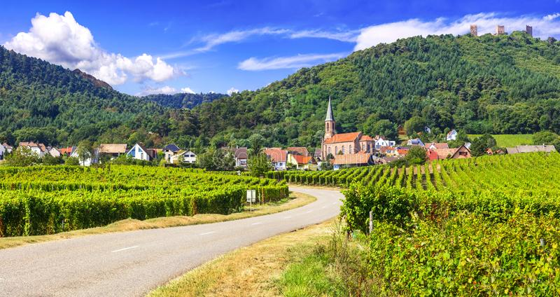 Région d'Alsace de la France - vignobles, maisons et montagnes image libre de droits