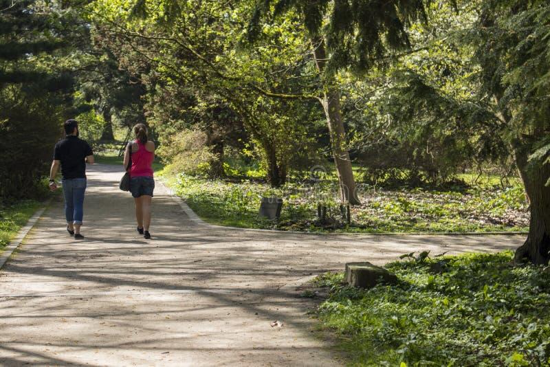 Région de Dortmund, la Ruhr, le Rhin du nord Westphalie, Allemagne - 16 avril 2018 : Le parc de Romberg fait partie du réseau eur images libres de droits