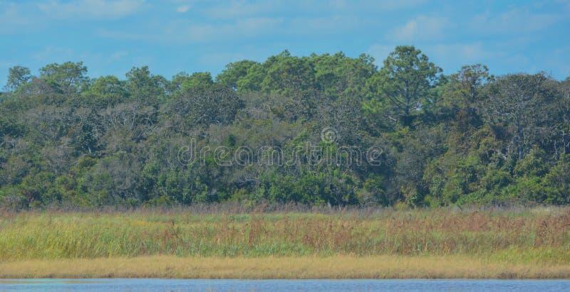 Région de gestion de faune de rivière de Guana en Floride images stock