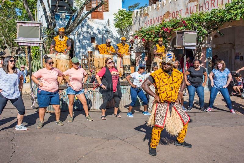 Région de l'Afrique au règne animal chez Walt Disney World photographie stock libre de droits