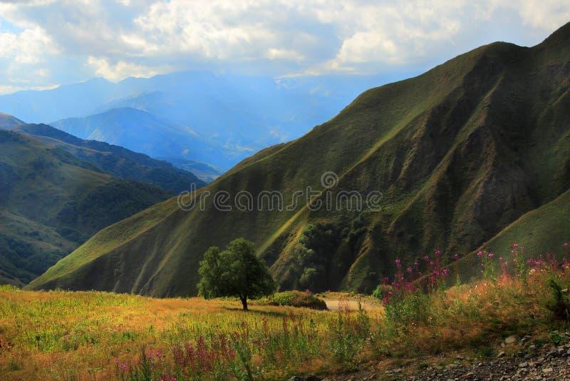 Région de Pshavi, la Géorgie photographie stock libre de droits