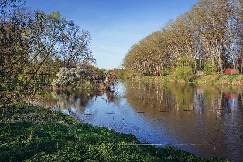 Région de Triborder sur la rivière de Thaya et de Morava photos stock