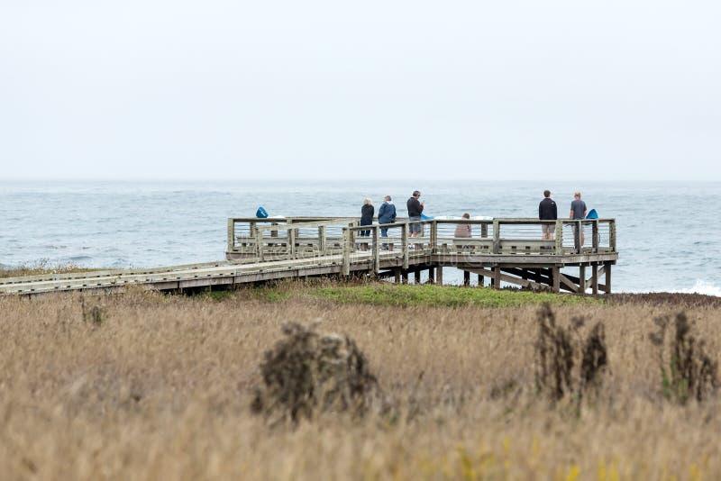 Région de visionnement de faune avec des touristes photos stock
